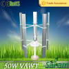 Rated 50W peak 75W 12V 24V optional windmill wind mill