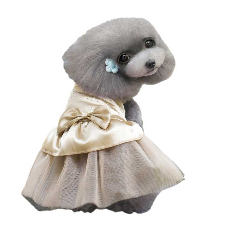 RoblionPet The Pretty Pet Summer Dress/dog dress/pet clothes,cute dog dress,fashion evening dress