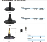 passenger car and light truck valves