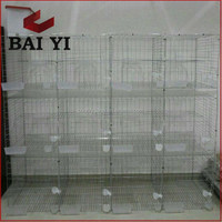 Pigeon Cages Design Baskets With Plastic Pigeon Feeder