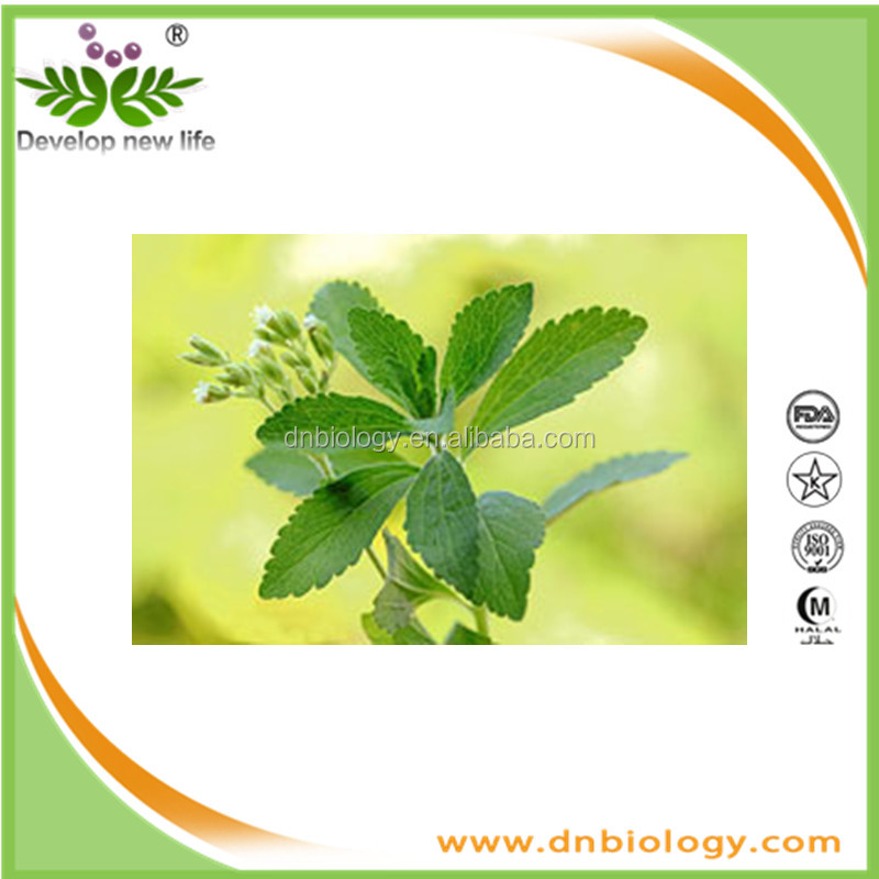 bulk pure stevia extract stevioside 95% sweeteners sugar podwer stevia extract