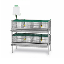 design layer quail cages for sale