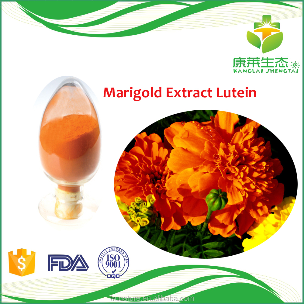 Chinese herb extraction of marigold oleoresin as natural pigment