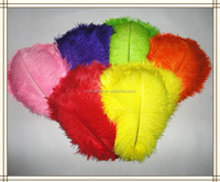 Factory Wholesale Carnival Artificial White and Dyed colors 25-30cm Ostrich Feathers for wedding/Party/dress decoration