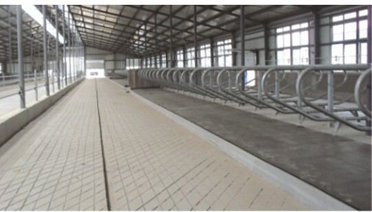 Comfortable Safety Horse Cow Rubber Mat For Dairy Farm
