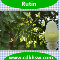Natural Antioxidant Rutin Powder NF11 , cas no.:250249-75-3