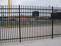 Black vinyl Steel Ornamental Fence / modern style steel fence