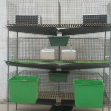 Cheap Rabbit Cages with big capacity Made In China For Rabbit Farming