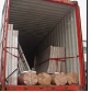 Hot selling onion warehouse for wholesales