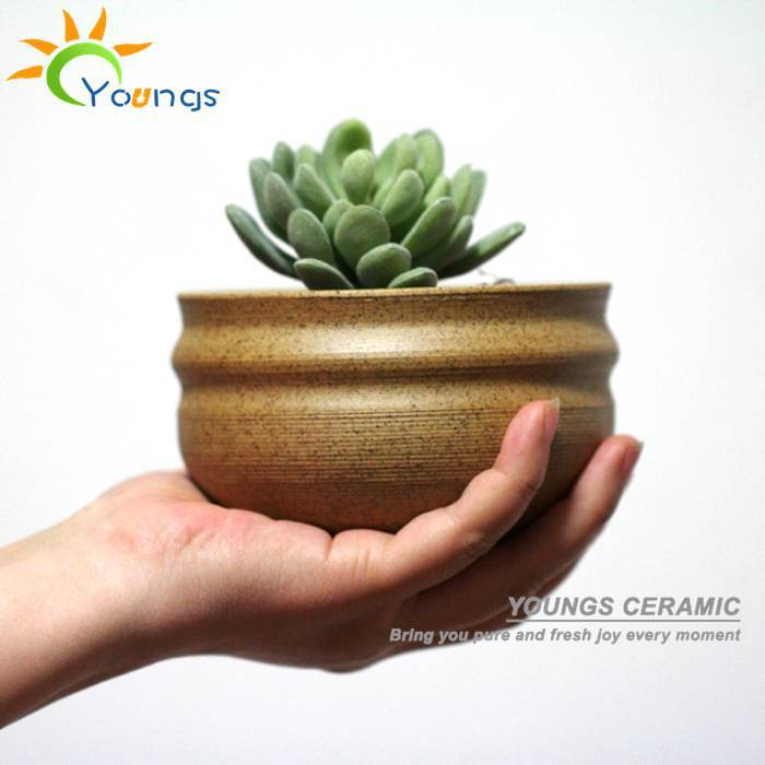 100% Handicraft Jingdezhen Small Ceramic Flower Pots Wholesale For Succulent Plants