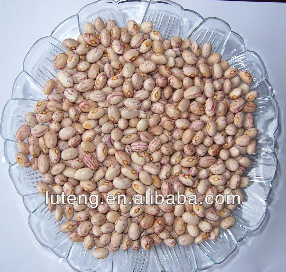 2014 white kidney beans with high quality