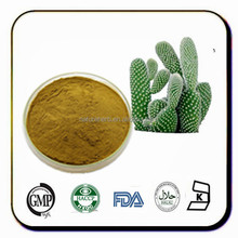 Natural and pure prickly pear extract powder
