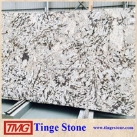 Elegant Brazil White Granite Alpex Granite For Countertop