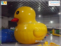 Top Quality inflatable pool duck inflatable floating duck, inflatable model for advertising