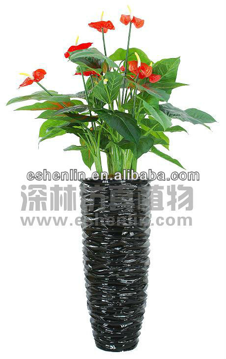 2017 new outdoor loose anthurium artificial flowers