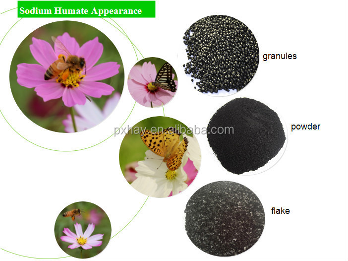 humus fertilizer for soil/biological humic acid fertilizer/humic acid fertilizer
