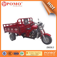 China Hot Sale Heavy Load 300cc Three Wheel Motorcycle Moto Taxi For Sale (DH30.1)