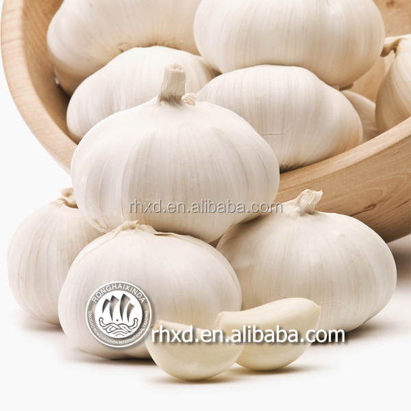 China garlic price 2016