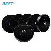 2017 Factory Price Fitness Gym 10kg Bumper Plate