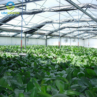 Commercial Polycarbonate Greenhouse With Auto Light