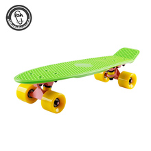 Customized mini 22 inch cruiser skateboard fish board