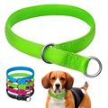 Newest Nylon Fashion Pet Collar For Dogs