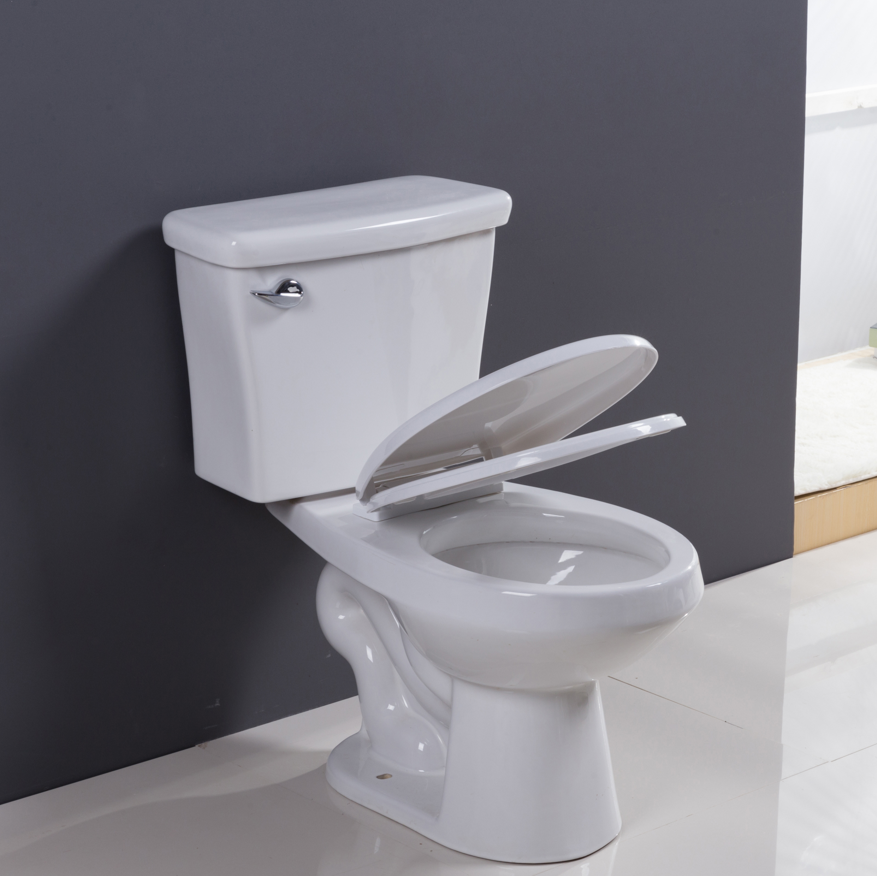back to wall two piece toilet tornado flushing system made in china
