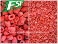 IQF raspberry whole/crumble ,Frozen chinese raspberry in best price