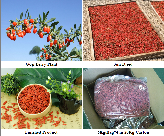 China Dried Organic Goji Berry Market Price