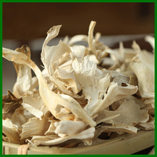 top quality bulk dried chestnut mushroom