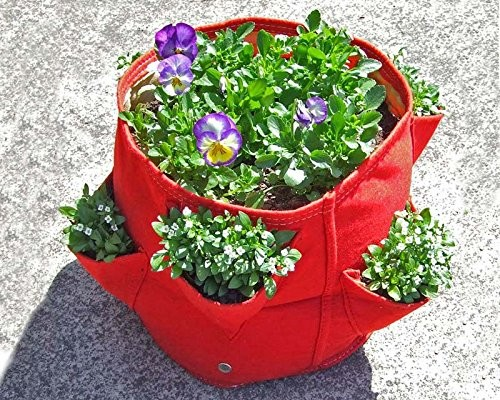 2017 New style Garden strawberry planter with pocket