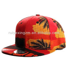 hawaii fabric 3d print plastic double-breasted snapback blank hat
