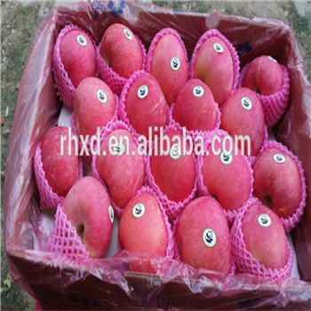 2017 iran apples exporter Common Cultivation Type Cripps Pink Apples