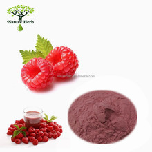 100% Water-soluble Raspberry Juice Concentrate Powder