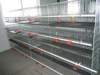 Metal chicken layer cage for poultry farm