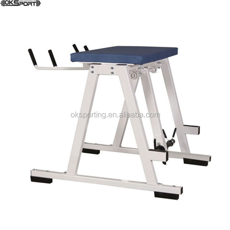 Factory supply professional gym equipment pro reverse hyper
