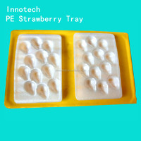 disposable plastic tray insert for strawberry