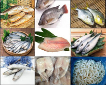 Wholesale Frozen Seafood Exporter And fish Trading Companies