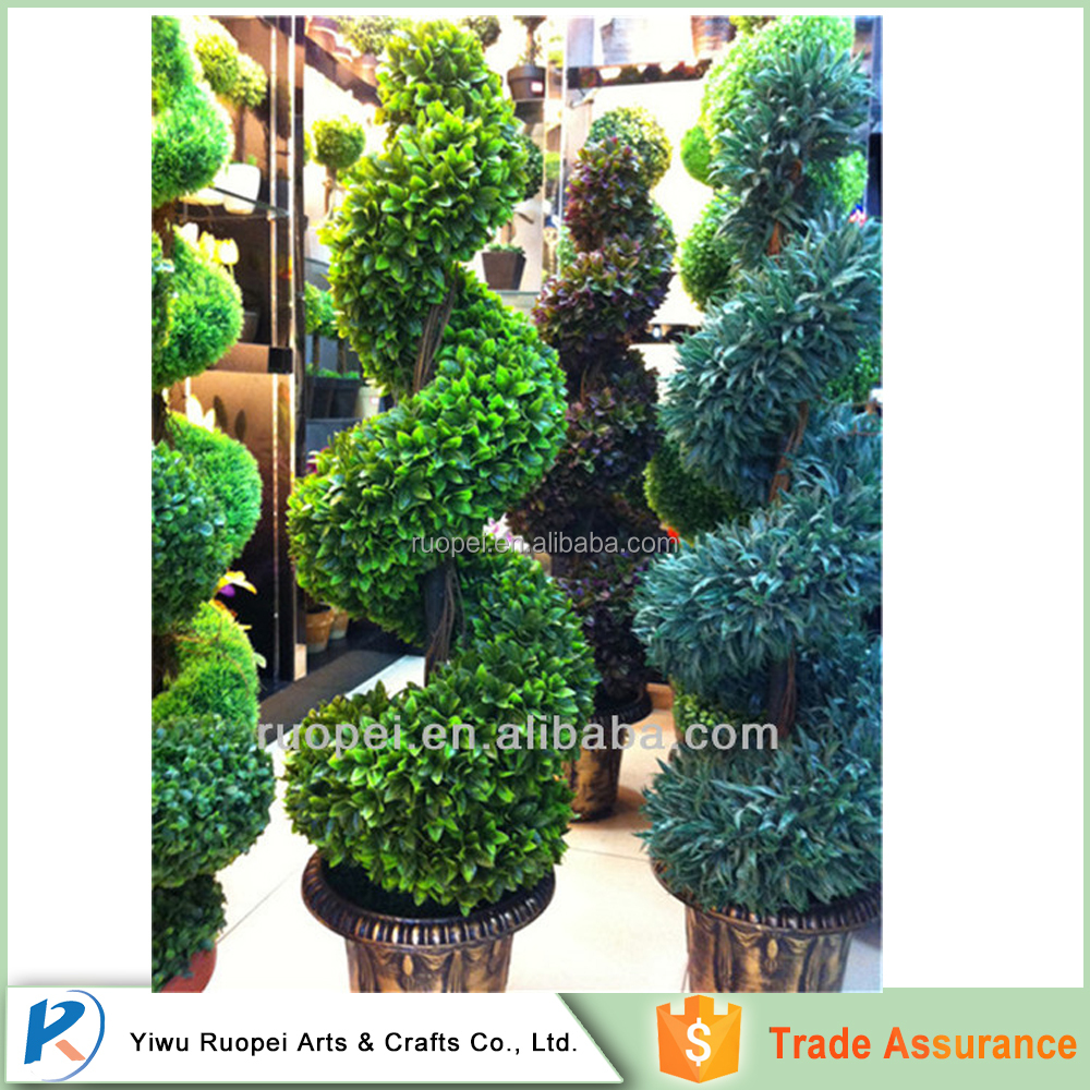 Friendly Evergreen large outdoor bonsai trees price