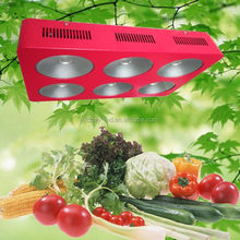 430w cob led grow lights with timer for best flowering and fruiting with full spectrum