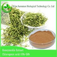 best price of honeysuckle extract, HoneySuchle Flowers Extract, extracts from Flos Lonicerae