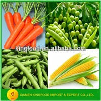 High Quality IQF Mixed Vegetables in Stock