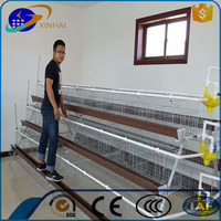 Automatic egg collection equipment A type laying chicken cage