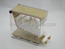2014 Top sale cotton ball dispenser /Dental cotton roll dispenser