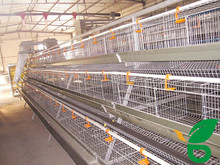 welded steel wire mesh different types of poultry house for egg layer chicken and broiler chicken