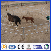 DM Hot Dipped Galvanized Horse Fence Panel / Corral Panel from Professional Manufacturer