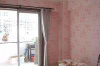 Caboli 3D Home Wallpaper Paint