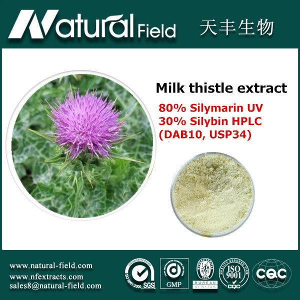 Best Quality Milk Thistle Extracts Powder Soluble in water