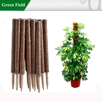 Green Field Coconut Garden Planter Stake,Garden Planter Pot Stick