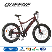 1000w 1500w Big Power Fat Tire